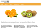Responsives Template 'Orange Fruit'